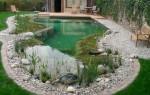 Сам себе ландшафтный дизайнер: делаем пруд на приусадебном участке своими руками?