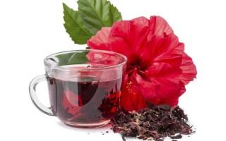 О пользе и противопоказаниях употребления чая каркаде