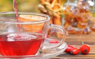 Как заваривать и пить плоды шиповника