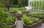 Как сделать правильно разные грядки: оформляем огород